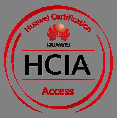HCIA Access